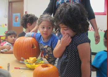Pumpkin-Carving001